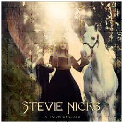 NICKS STEVIE ( FLEETWOOD MAC 2011 ) - IN YOUR DREAMS