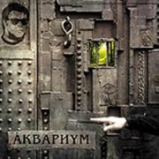 АКВАРИУМ .Архангельск