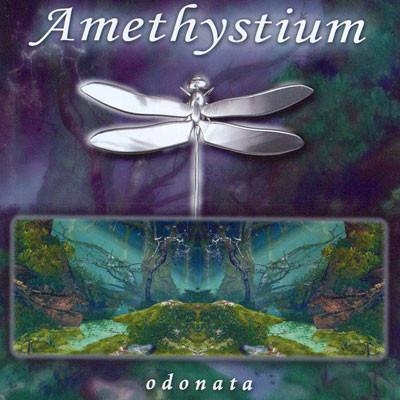 Amethystium. odonata
