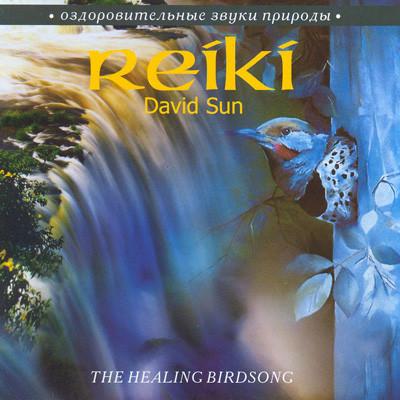 David Sun - Reiki The Healing Bridsong