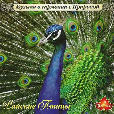 Музыка в Гармонии С Природой - Райские Птицы