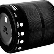 Радиоприемник — портативная акустика WSTER WS-887Bluetooth